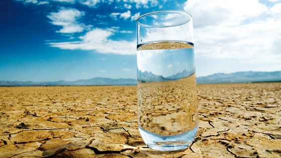 Glass of Water on Salt Flats